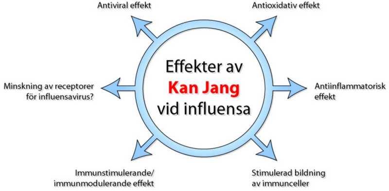 influensa hög feber